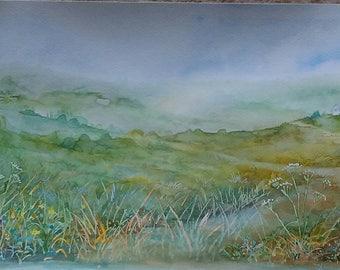 Summer fields and wildflower landscape