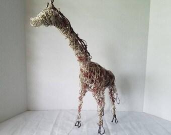 The African giraffe