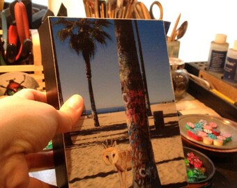 Wolfowl in Venice Beach behind a graffiti painted tree,5x7 wood block