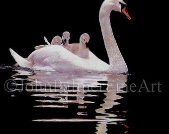 Swan painting, swan picture, swan print from my original pastel painting of a swan carrying its brood.