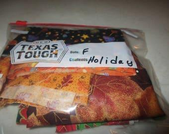 Holiday Fabric Scraps -- F