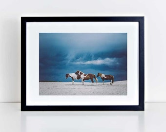 Wild Horse Photography, Beach Decor, Horse Wall Art, Equine Print, Storm Clouds, Nursery Decor, Horse Photo, Assateague Island, Blue