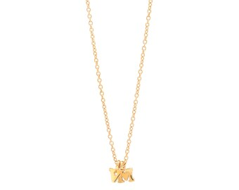 Two Initials Gold Vermeil Personalized Initial Necklace - Delicate 14k Gold Filled Chain - 2 Small Gold Vermeil Initial Charms