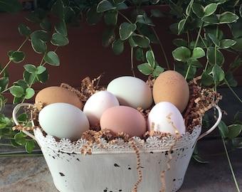 Half dozen ceramic egg mix