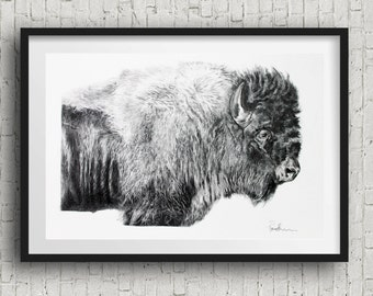buffalo Art Print bison art print  B&W  buffalo drawing buffalo decor