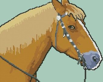 ORDER__HORSE_ka*** t****__PDF
