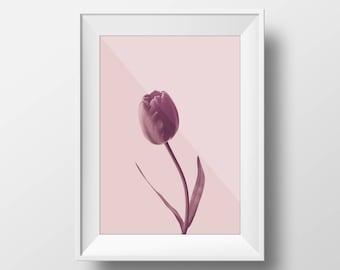 Tulip Print, Flower Print, Floral Wall Art, Tulip Art Print, Flowers Wall Art, Tulip Printable, Flower Poster, Printable wall art, Tulip art