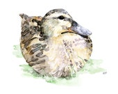 Duck Painting - Print fro...