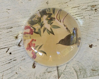 Paper Weight, Vintage Bird Paper Weight