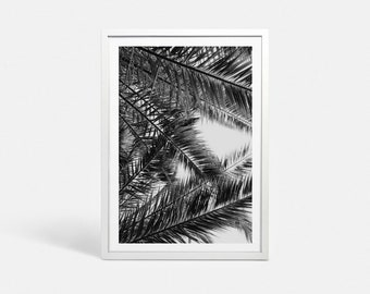 Palm leaf print Palm tree print Tropical tree art Black and white art print Tropical tree print photo Digital palm trees art Tropical prints