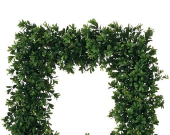 Square Boxwood Wreath 19""