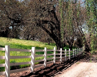Landscape Photography-Country Road