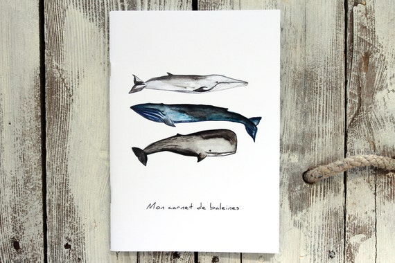Notebook - WHALES