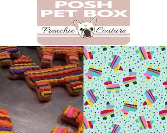 POSH PET Theme Box - Fiesta Edition -Handmade Pet Bandanas - Handcrafted Dog Treat