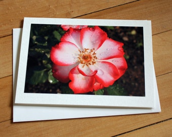 Floral Greeting Card, Blank Greeting Card, Note Card, Any Occasion, Birthday Card, Rose, Photography, Photograph, Stationary, Flower, Girl