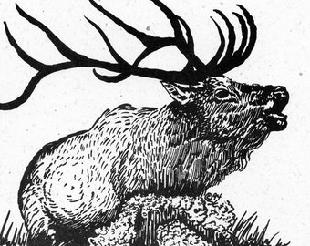 Michigan Made Note Cards - 5 Pack - Bull Elk - Pen and Ink - Cream-colored Paper with White Envelopes - Tied with Raffia - Christmas Gift
