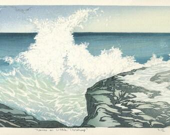 Waves on Little Thrumcap