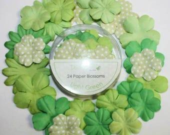 LOT 24 COLOR LIGHT GREEN SCRAP SCRAPBOOKING PAPER FLOWERS SHARE ALBUM