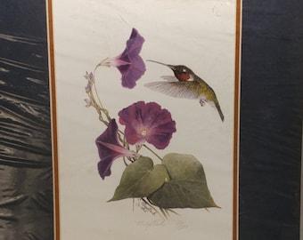 Vintage C. Meystrik 1995 Hummingbird Print Matted No. 30/500