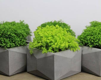 Diy CONCRETE SILICONE MOLD Cement Mould Pot Plant Square Geometric Home Business Market Clay Pottery Resin Casting