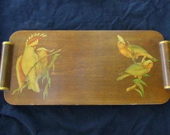 Vintage Decoupage Parrot Tray , Old Decorative Bird Tray