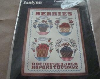 Janlynn Countd Cross Stitch KIT Berry Baskets #50-536