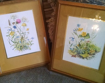 Wildflower pictures, Vintage Botanical prints, 1970s wildflower, Franklin Picture Co., MCM pictures, Bumblebee and clover,