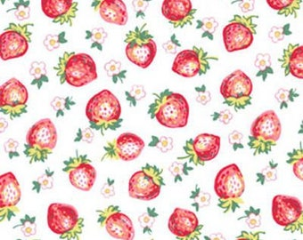"Michael Miller ""Strawberry Blossom"" in Berry , 1 Yard"