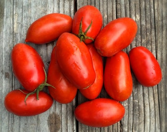 SALE! Roma Paste Tomato Italian Heirloom Seeds Organically Grown Excellent Fresh or Cooked Canned Determinate Variety
