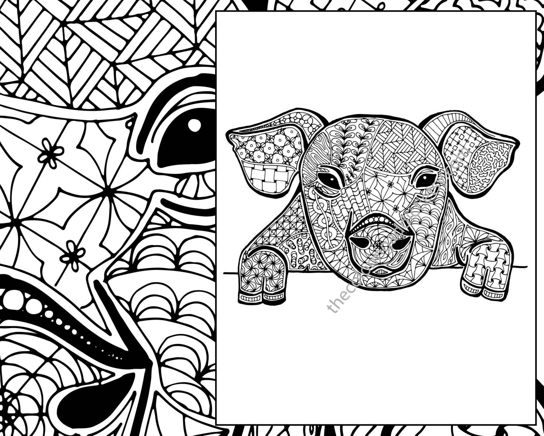 Pig Coloring Sheet Animal Pdf Zentangle Colouring