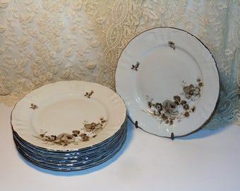 Winterling Dawn Rose, 7 Vintage Bread and Butter Plates,  Bavaria Germany, Vintage China Dinnerware, Brown Flowers, Platinum Trim