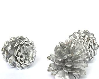 Silver Pine Cones/Natural Silver Pinecones/Natural Painted Pinecones/Metallic Silver Pinecones/Wedding Decor/Rustic Wedding/Valentine's Day