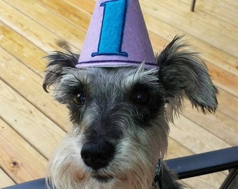 Pet Dog Birthday Party Hat
