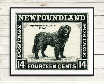 pet gift, newfoundland dog breed, newfoundland dog gift ideas, dog breed newfoundland, newfoundland gift ideas, newfoundland gifts, dog art