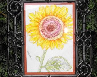 Sunflower Drawing Original Art Denyer Designs
