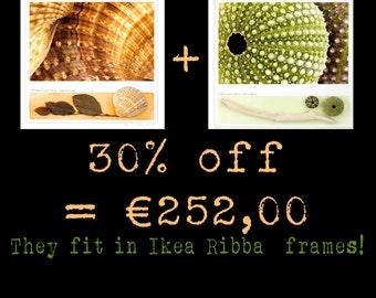 Marea, giallo e verde. In offerta! 30% di sconto! Fotografie originali e materiali naturali. Entrano nelle cornici Ikea Ribba da 50x50 cm.
