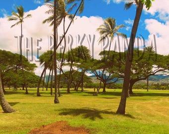 Rustic photo print, Hawaiian trees, vintage, retro photo print, photography, home decor, wall art