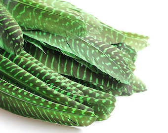 """Dyed Lime Green Guinea Hen Wing Feathers 6-7.5"""" 