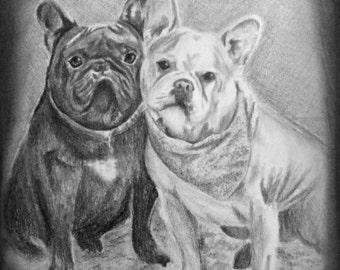 Pet Drawing, Dog Portrait, Pet Portrait Custom, Pet Portrait from Photo, Pencil Sketch of Dog, Dog Lover Gift, Realistic Dog Portrait
