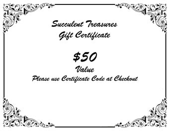 Custom Gift certificate, Succulent Treasures Gift card Birthday christmas
