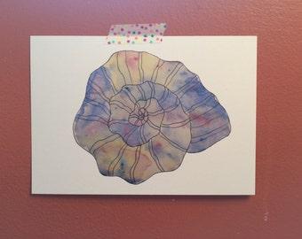 5x7 Art Print - Seashell Nautical Watercolour Print