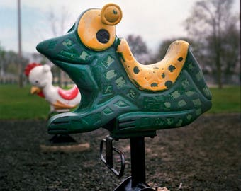 Fine Art Photo - Playground Bouncer, Frog square Fine Art Photo, kids room, home decor,  Photography
