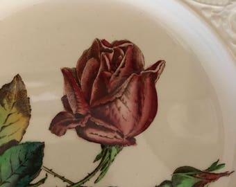 "Vintage SPODE Botanical 9"" Rose Dinner Plate"