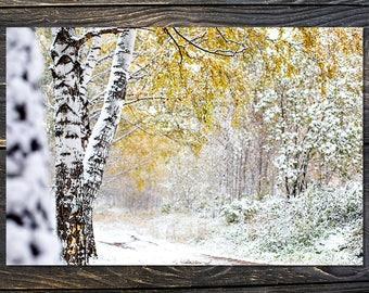 postcard_Siberia
