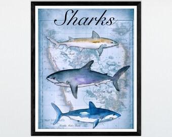 Shark Decor Shark Art Shark Print Shark Art Print Shark Poster Boys Bedroom Decor Gift for Men Great White Shark Antique Map Art Antique Map