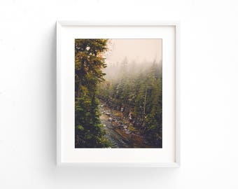 """landscape, river, forest, wilderness, fog, trees, large art, large wall art, modern, contemporary, large art prints - """"Through the Forest"""""""