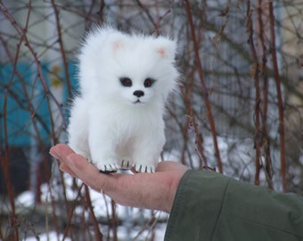 White Fluffy miracle.