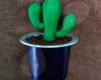 Succulent potted mini Magnet: Euphorbia
