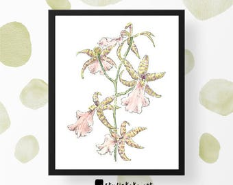 Art Giclee Print Floral // Botanical Artwork // Mother's Day Gift  // Gifts for her // Fine Art Print of Original Watercolour Painting