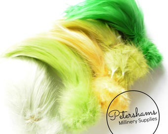 Loose Hackle Feather Mixed Selection Packs - Full Hackle - Citrus Mix